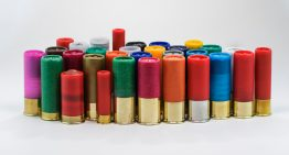 Mini Shotgun Shells