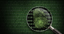 Stealth Searching: Three Ways to Erase Your Digital Fingerprint