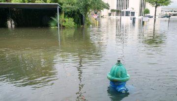 Hurricane Water Survival Checklist