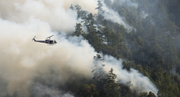 What Wildfires Are Doing to Our Respiratory Systems