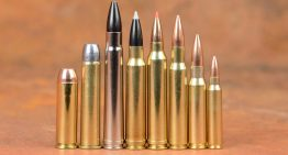 High-capacity magazine shortage? Get these 3 before it's too late.